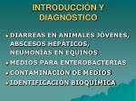 introducci n y diagn stico