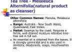 tea tree melaleuca alternifolia natural product as cleanser