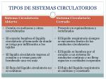 tipos de sistemas circulatorios