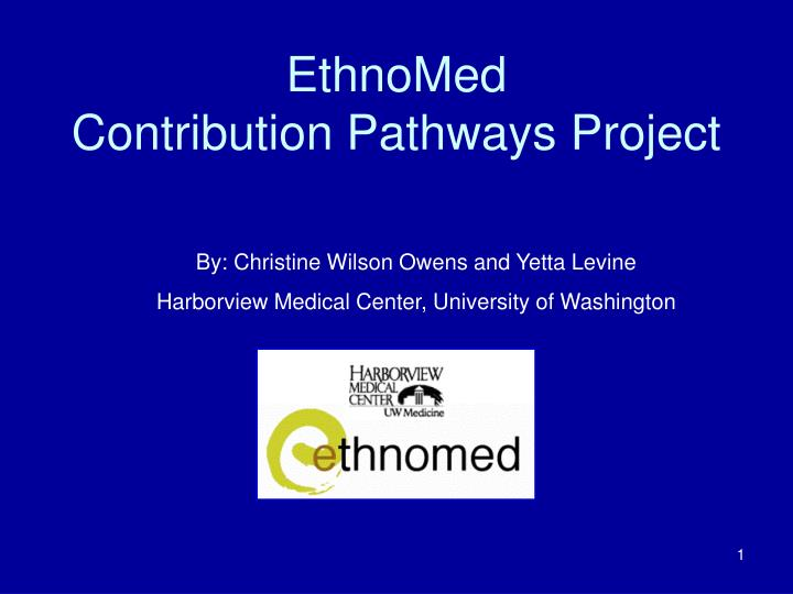 ethnomed contribution pathways project n.
