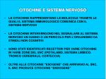 citochine e sistema nervoso