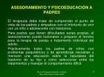 asesoramiento y psicoeducaci n a padres1