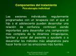 componentes del tratamiento psicoterapia individual1