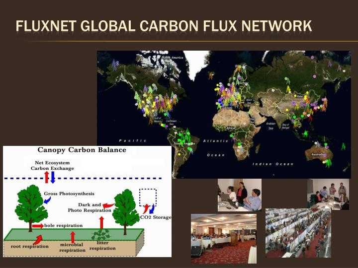 Fluxnet global carbon flux network
