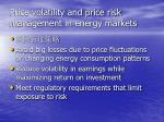 price volatility and price risk management in energy markets