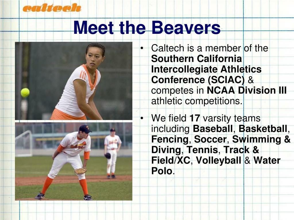 Meet the Beavers
