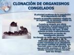 clonaci n de organismos congelados