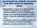 la clonaci n de cualquier secuencia de adn incluye los siguientes pasos