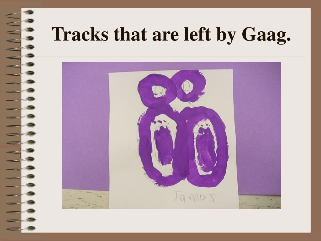 Tracks that are left by Gaag.