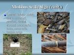 medium scale sign cont