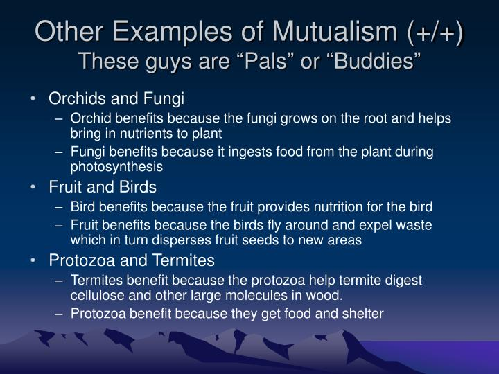 Other examples of mutualism these guys are pals or buddies