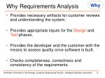 why requirements analysis