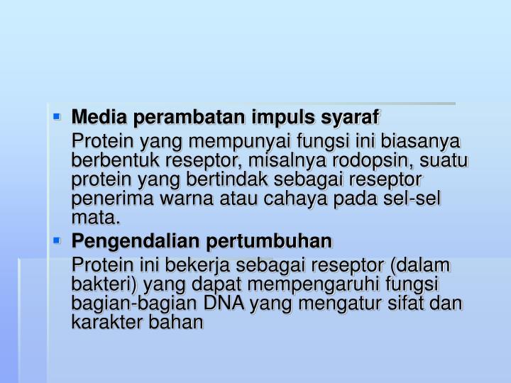 Media perambatan impuls syaraf