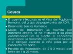 causas1
