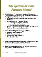 the system of care practice model1