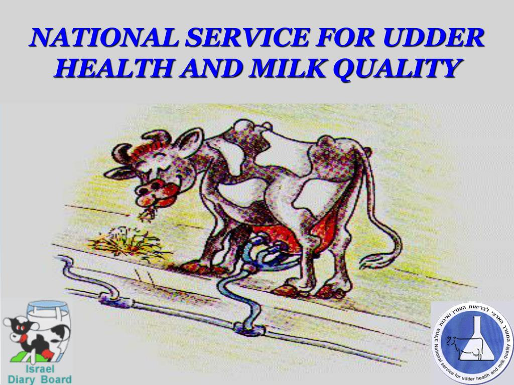 national service for udder health and milk quality l.