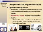 componentes de ergonom a visual1