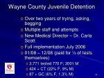 wayne county juvenile detention