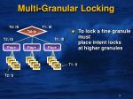 multi granular locking
