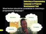 selecting a programming language or program development tool