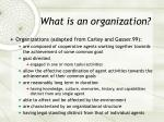 what is an organization2