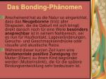 das bonding ph nomen