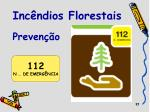 inc ndios florestais