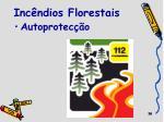 inc ndios florestais1