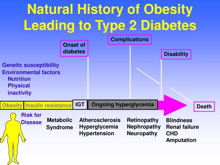 natural history of obesity leading to type 2 diabetes n.