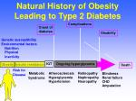 natural history of obesity leading to type 2 diabetes1