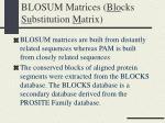 blosum matrices blo cks su bstitution m atrix