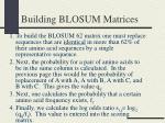 building blosum matrices