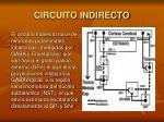 circuito indirecto