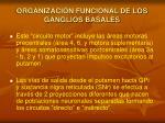 organizaci n funcional de los ganglios basales1