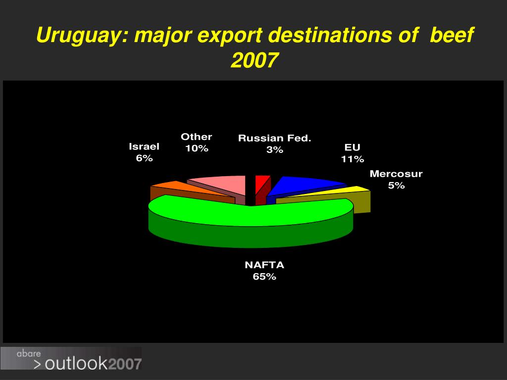 Uruguay: major export destinations of  beef 2007