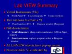lab view summary