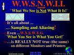 w w s n w i i what we see is not what it is