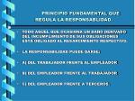 principio fundamental que regula la responsablidad