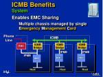 icmb benefits system17