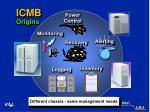icmb origins