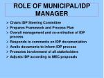 role of municipal idp manager