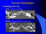 estudio radiol gico4
