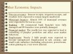 other economic impacts