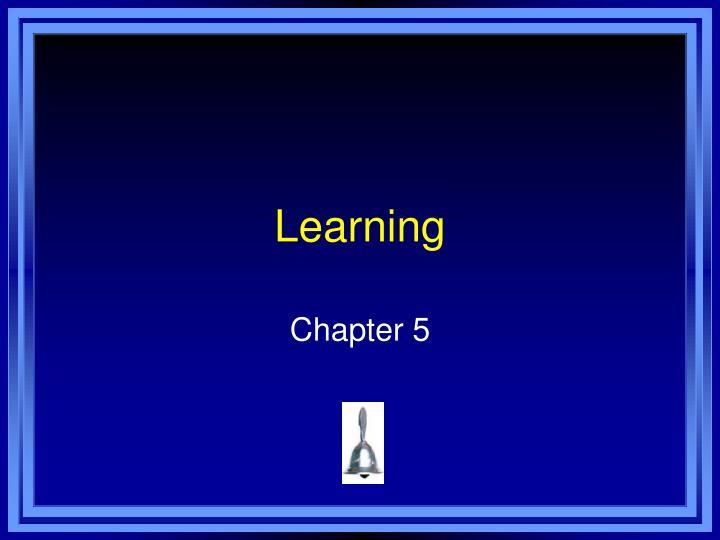 learning n.