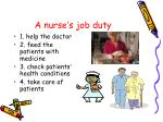 a nurse s job duty