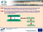 the premise major steps in capacity building