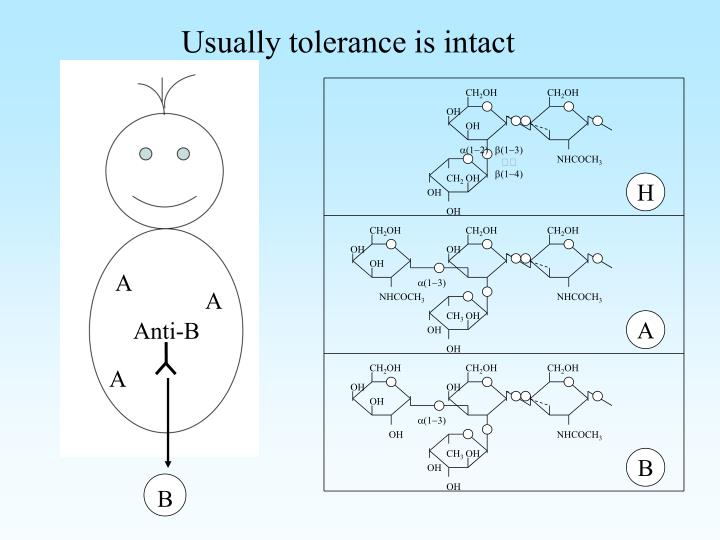 Usually tolerance is intact