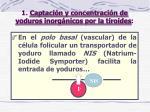 1 captaci n y concentraci n de yoduros inorg nicos por la tiroides