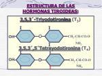 estructura de las hormonas tiroideas
