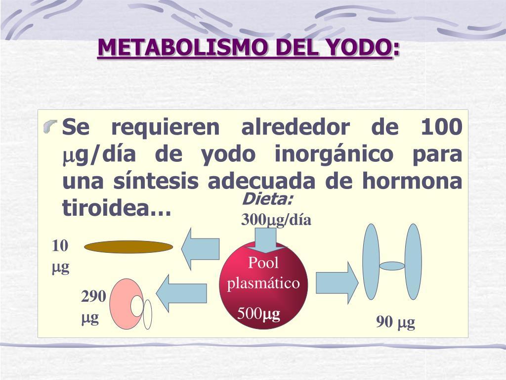 PPT - METABOLISMO HORMONAL TIROIDEO PowerPoint..